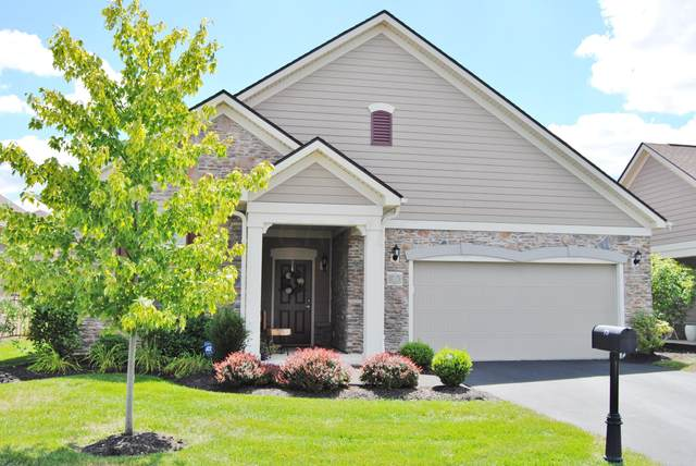73 Park Knoll Place, Powell, OH 43065 (MLS #220028448) :: Exp Realty