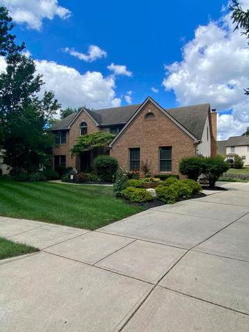 790 Watten Lane, Westerville, OH 43081 (MLS #220028492) :: The Willcut Group