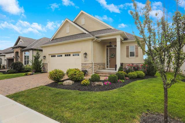 6035 Ellison Drive, Westerville, OH 43082 (MLS #220028523) :: The Willcut Group