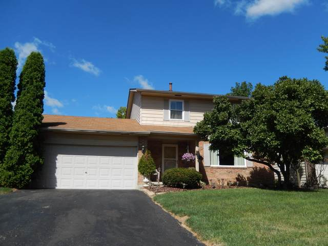 5181 Maplewood Court W, Columbus, OH 43229 (MLS #220028616) :: The Holden Agency