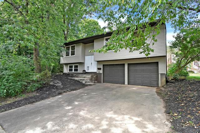 5623 Bashaw Drive, Westerville, OH 43081 (MLS #220028636) :: Jarrett Home Group