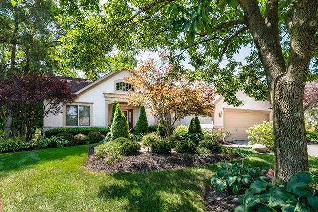 544 Shoal Court, Reynoldsburg, OH 43068 (MLS #220029096) :: Sam Miller Team