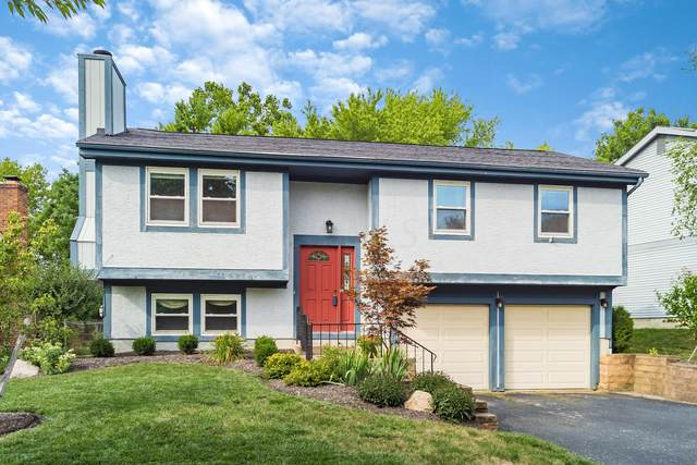 3228 Delburn Avenue, Dublin, OH 43017 (MLS #220029285) :: The Clark Group @ ERA Real Solutions Realty