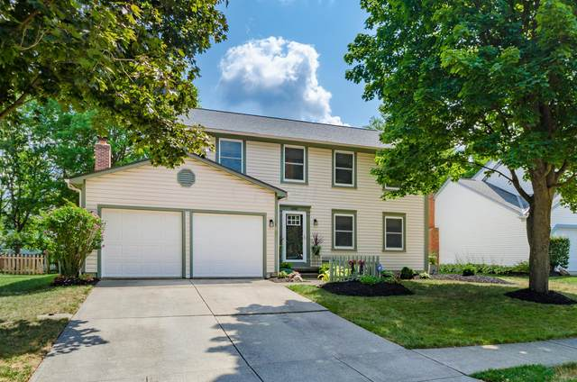 6888 Pine Bark Lane, Columbus, OH 43235 (MLS #220029436) :: Keller Williams Excel