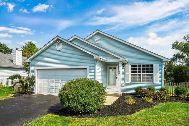 2394 Spring Cress Avenue, Grove City, OH 43123 (MLS #220029528) :: The Jeff and Neal Team   Nth Degree Realty