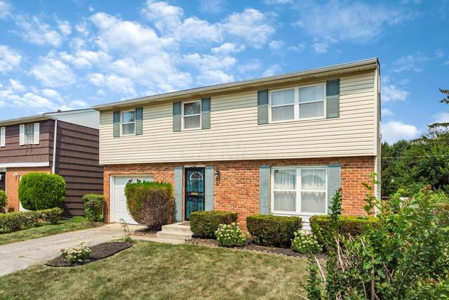 1498 Venice Drive, Columbus, OH 43207 (MLS #220029549) :: Sam Miller Team