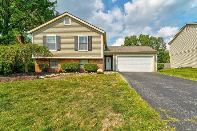 5370 Woodville Court, Columbus, OH 43230 (MLS #220029643) :: Sam Miller Team
