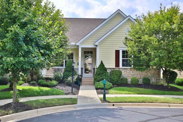 5447 Langwell Drive, Westerville, OH 43082 (MLS #220029740) :: 3 Degrees Realty