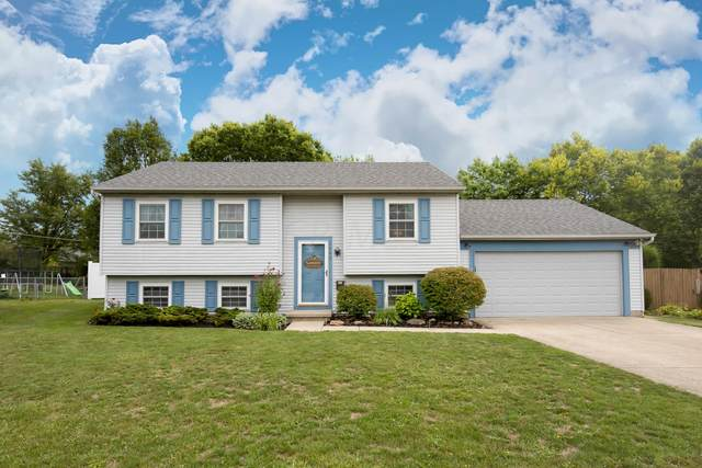2940 Daisy Lane, Columbus, OH 43204 (MLS #220029858) :: RE/MAX ONE
