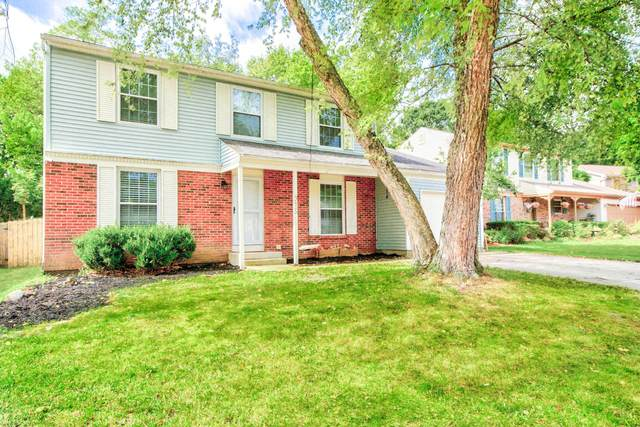 915 Hartney Drive, Columbus, OH 43230 (MLS #220029945) :: RE/MAX ONE