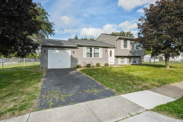 216 Greenlake Street, Galloway, OH 43119 (MLS #220029981) :: Sam Miller Team