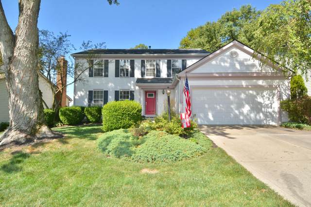 3979 Maidstone Drive, Gahanna, OH 43230 (MLS #220030094) :: RE/MAX ONE