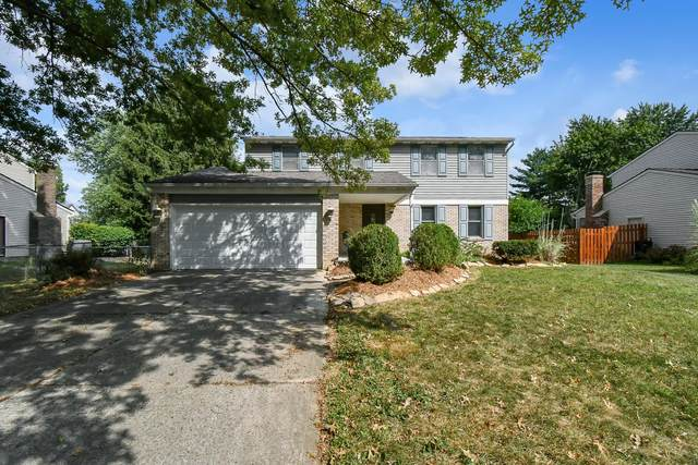 396 Armor Hill Drive, Gahanna, OH 43230 (MLS #220030185) :: The Clark Group @ ERA Real Solutions Realty