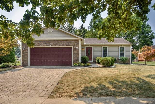 2303 Green Island Drive, Columbus, OH 43228 (MLS #220030246) :: Sam Miller Team