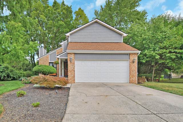 3092 Downhill Drive, Columbus, OH 43221 (MLS #220030247) :: The Willcut Group