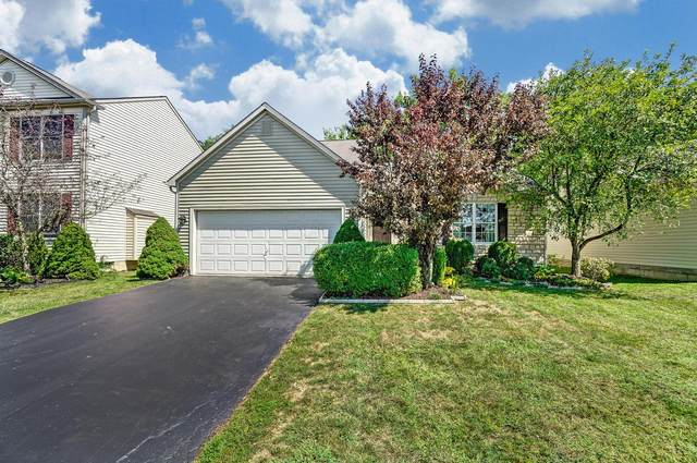 5590 Westerville Crossing Drive, Westerville, OH 43081 (MLS #220030456) :: MORE Ohio