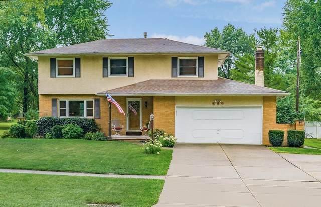 699 Havens Corners Road, Gahanna, OH 43230 (MLS #220030560) :: MORE Ohio