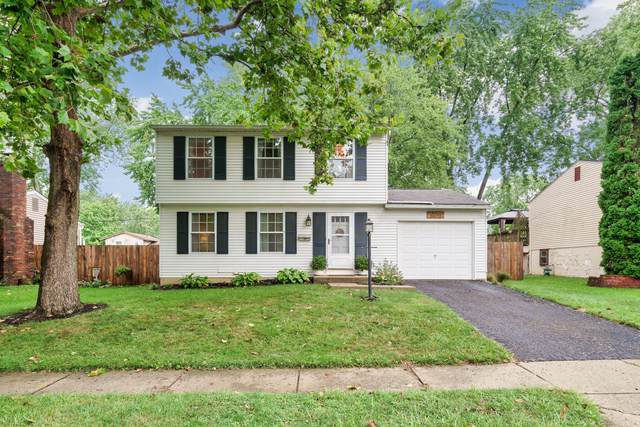 3572 Makassar Drive, Westerville, OH 43081 (MLS #220030584) :: RE/MAX ONE