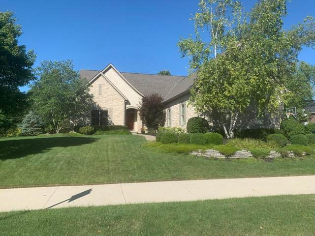 9297 Donatello Drive, Dublin, OH 43016 (MLS #220030696) :: The Willcut Group