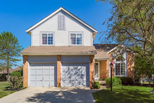 5506 Edie Drive, Hilliard, OH 43026 (MLS #220030716) :: The Clark Group @ ERA Real Solutions Realty