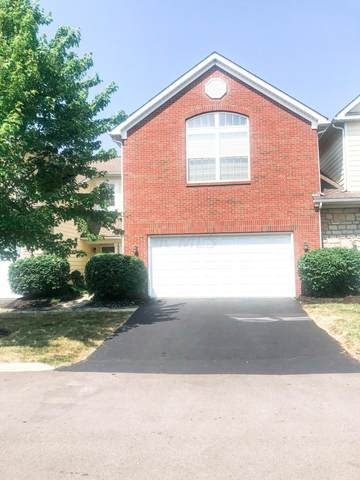 7805 S Essex Gate Drive, Dublin, OH 43016 (MLS #220030745) :: The Willcut Group
