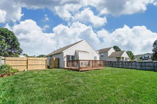 6269 Haydens Burrow Drive, Canal Winchester, OH 43110 (MLS #220031078) :: Sam Miller Team