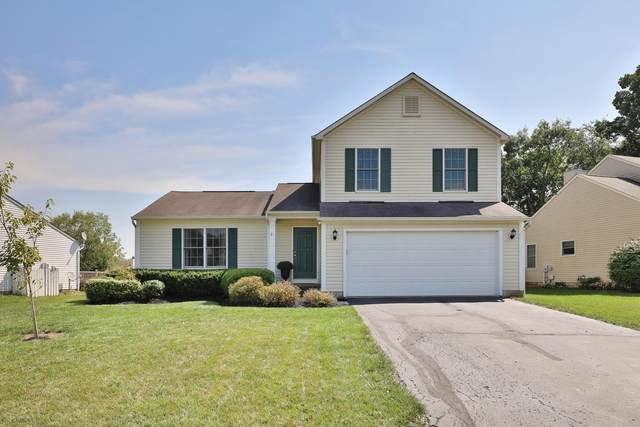 744 Heartland Meadows Drive, Sunbury, OH 43074 (MLS #220031212) :: Jarrett Home Group
