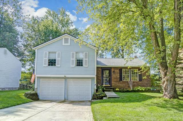 4039 Beauty Rose Avenue, Westerville, OH 43081 (MLS #220031276) :: Core Ohio Realty Advisors