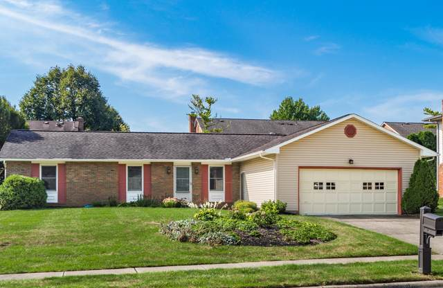 1265 Slade Avenue, Columbus, OH 43235 (MLS #220031359) :: Exp Realty
