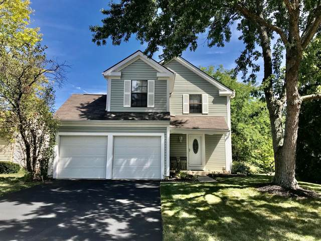 4950 Cavan Court, Columbus, OH 43221 (MLS #220031380) :: Keller Williams Excel