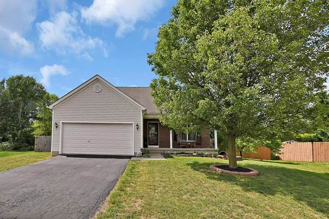 2025 Santuomo Avenue, Grove City, OH 43123 (MLS #220031385) :: Signature Real Estate