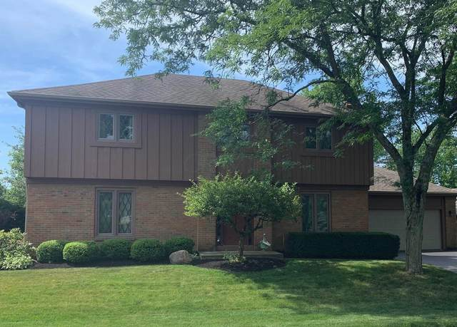 5855 Moray Court, Dublin, OH 43017 (MLS #220031391) :: Jarrett Home Group