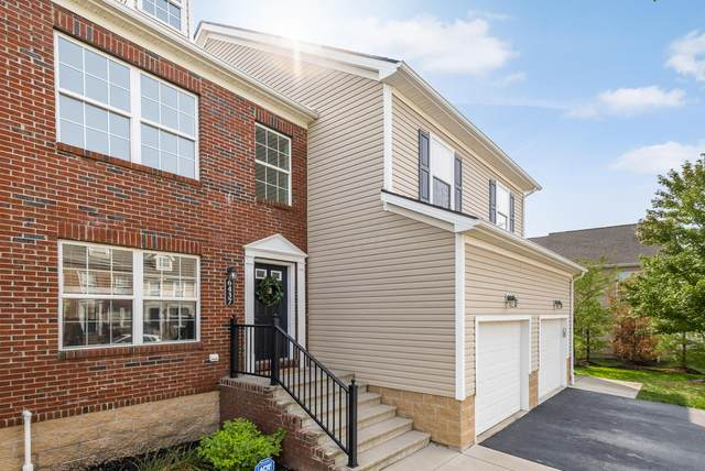 6437 Walnut Fork Drive, Westerville, OH 43081 (MLS #220031503) :: Signature Real Estate