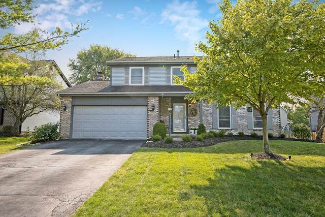 128 Highmeadows Circle, Powell, OH 43065 (MLS #220031521) :: Sam Miller Team