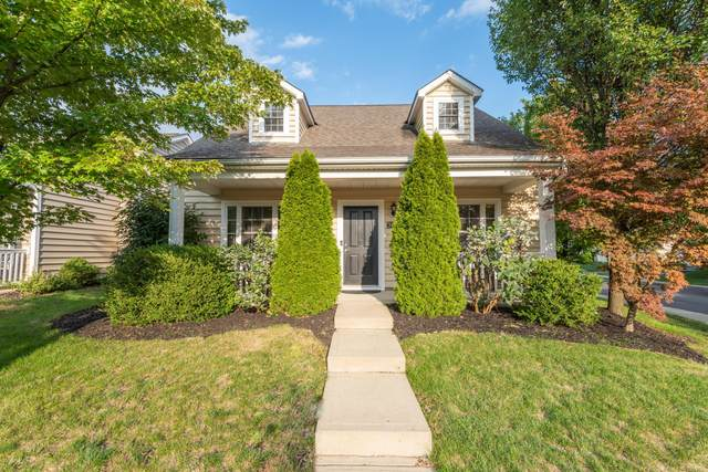 3948 Summerstone Drive, Columbus, OH 43230 (MLS #220031618) :: Exp Realty