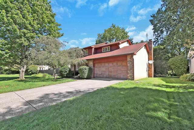 7120 White Butterfly Lane, Reynoldsburg, OH 43068 (MLS #220031680) :: Berkshire Hathaway HomeServices Crager Tobin Real Estate
