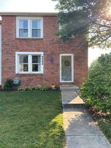 8682 Glencanyon Drive, Powell, OH 43065 (MLS #220031715) :: RE/MAX ONE