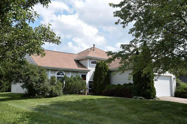 6442 Old Ben Lane, Canal Winchester, OH 43110 (MLS #220031725) :: Exp Realty