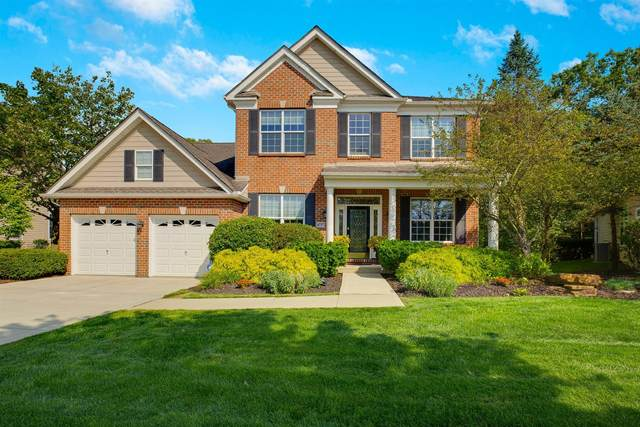 4737 St Medan Drive, Westerville, OH 43082 (MLS #220031856) :: The Willcut Group