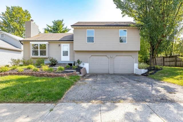 1262 Snohomish Avenue, Worthington, OH 43085 (MLS #220031912) :: Angel Oak Group