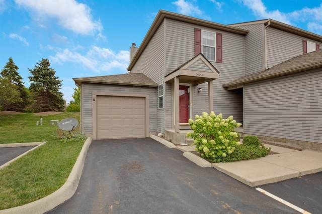 5594 Wigmore Drive 33A, Columbus, OH 43235 (MLS #220031979) :: Sam Miller Team