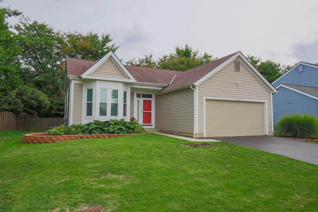 4540 Cliff Ridge Drive, Columbus, OH 43230 (MLS #220032229) :: The Willcut Group