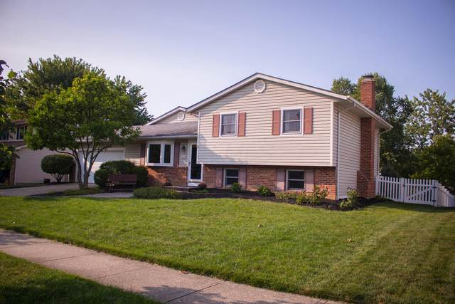 578 Michael Avenue, Westerville, OH 43081 (MLS #220032243) :: The Willcut Group