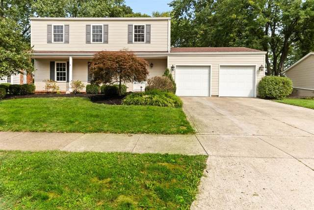 298 Delaware Drive, Westerville, OH 43081 (MLS #220032470) :: Exp Realty