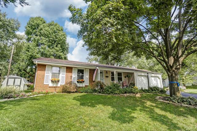 3436 Brazzaville Road, Westerville, OH 43081 (MLS #220032501) :: The Clark Group @ ERA Real Solutions Realty