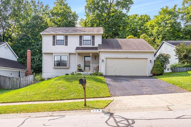 259 Sumption Drive, Columbus, OH 43230 (MLS #220032538) :: RE/MAX ONE