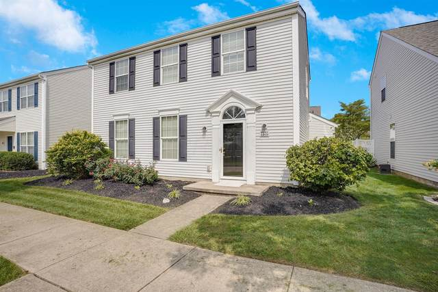 7232 Hillmont Drive, New Albany, OH 43054 (MLS #220032915) :: The Willcut Group