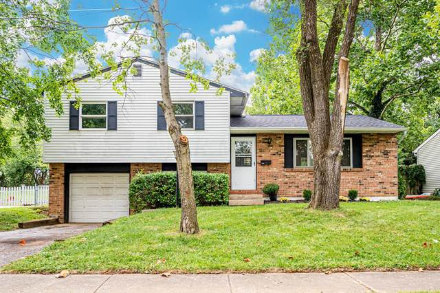 3444 Dahlgreen Drive, Westerville, OH 43081 (MLS #220032968) :: The Jeff and Neal Team | Nth Degree Realty
