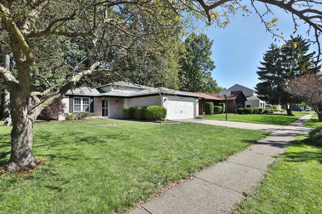 2054 Brofford Drive, Columbus, OH 43235 (MLS #220032985) :: The Holden Agency