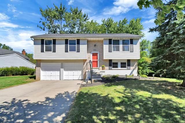 3062 Dunlavin Glen Road, Columbus, OH 43221 (MLS #220033003) :: 3 Degrees Realty